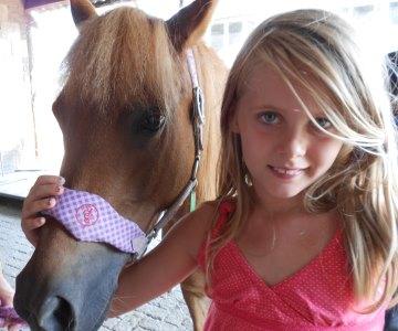 Ponykamp-kinderkamp-afbeelding