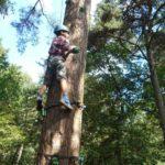 boom klimmen bushcraftkamp